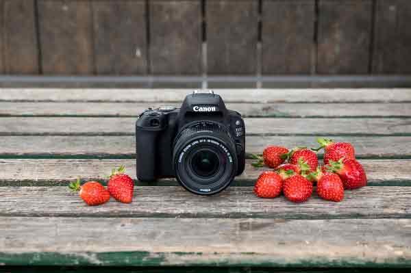 Canon'dan Fiyatları Eriten Yaz Kampanyası | DOSYA & HABER