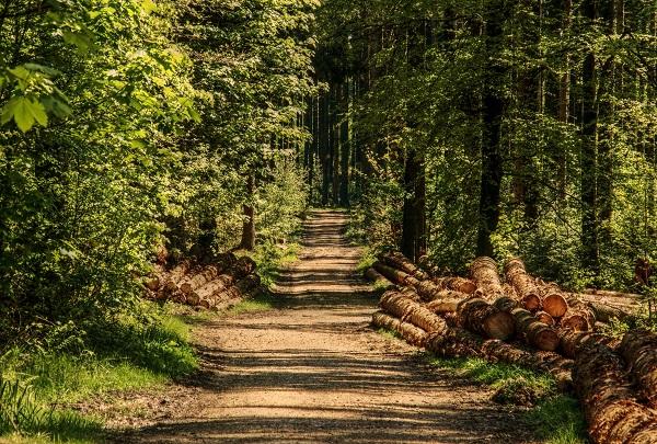 Ege Life   Tarım: Ülkenin Kurtuluşu ve Umudu
