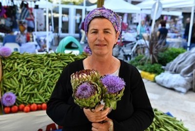 5. Enginar Festivali Hazırlıkları Başladı   GEZİ & KÜLTÜR SANAT