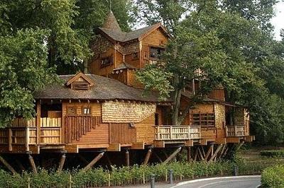 |  || Dünyanın En Güzel Ağaç Evleri