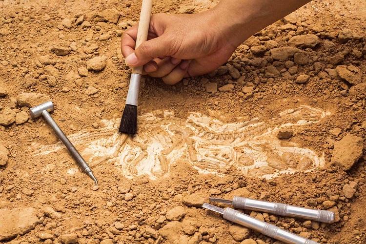 Doç. Dr. Çiler Çilingiroğlu Anlattı: Arkeolojik Kazı Çalışmaları Nasıl Gerçekleşiyor?