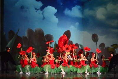 Kırmızı Çiçeğin Rüyası   GEZİ & KÜLTÜR SANAT