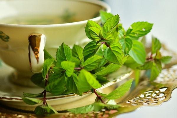 |  || Kışın Hasta Olmaktan Koruyacak Çaylar