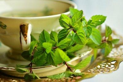 Kışın Hasta Olmaktan Koruyacak Çaylar | DOSYA & HABER