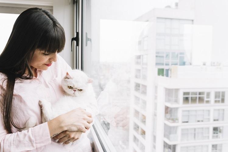 |  || Kedi ve Köpeklerde Kısırlaştırmanın Önemi