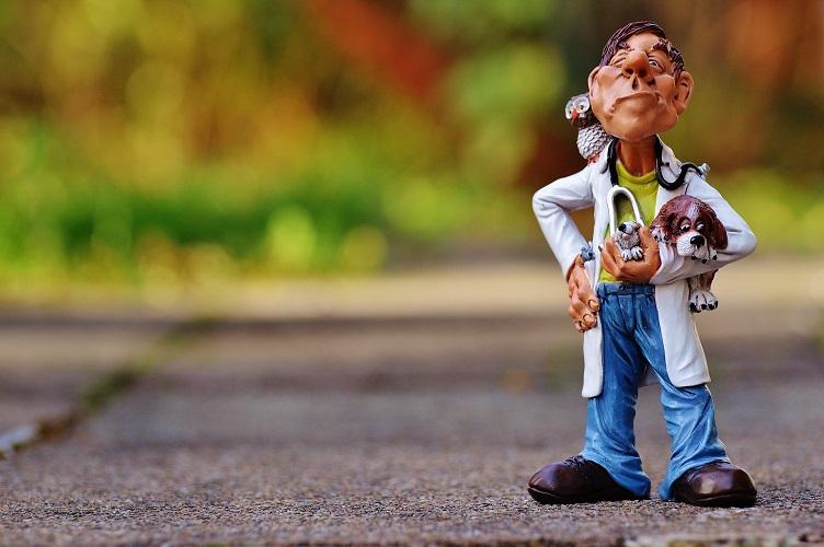 |  || Hangi Kliniğe Gitmeliyim?