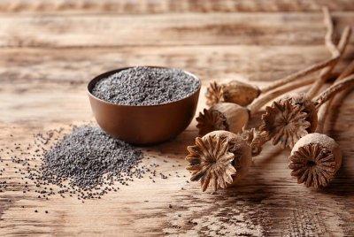 En İyi Bitkisel Protein Kaynakları | YEMEK & MEKAN
